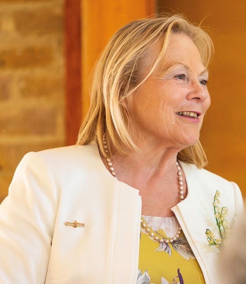 Dr Ann Limb Chair of the Innovation Corridor